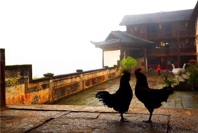 【最新】2020年利川大水井旅游区免票详情